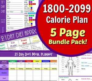 picture regarding 21 Day Fix Meal Planner Printable named 21 Working day Restore Container Measurements and Having Application Lead within Matter
